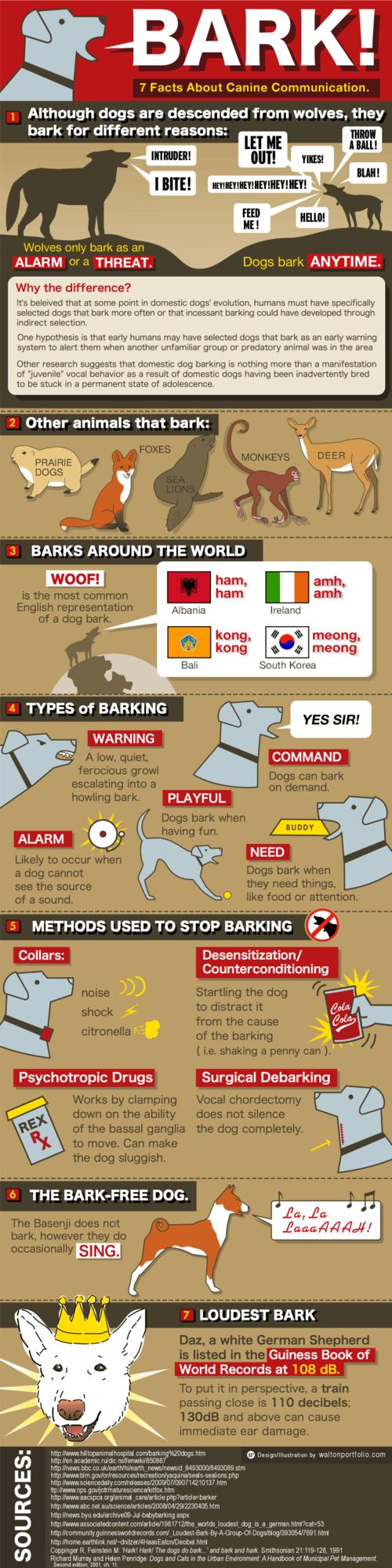 dog bark infographic.png.scaled500
