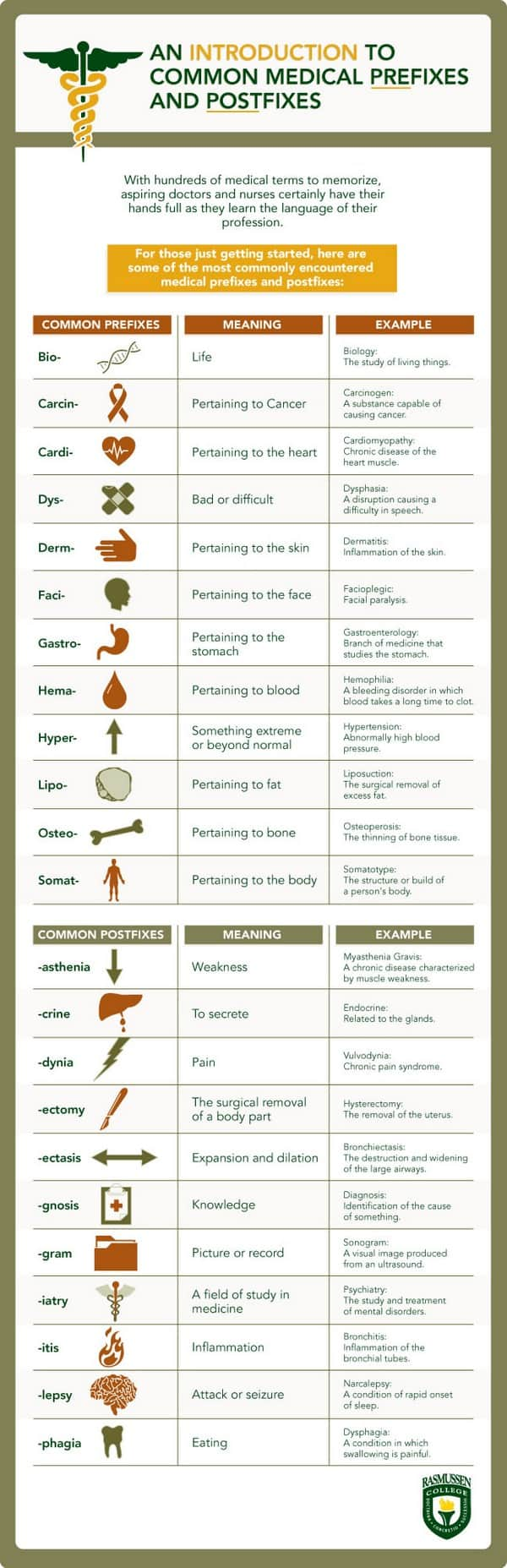 medical-terminology-infographic