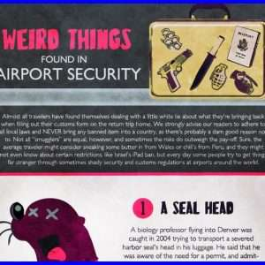 Weird Things Found in Airport Security Infographic1 300x300