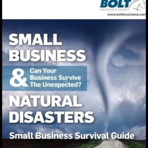 Bolt Small Business Natural disasters infographic1 300x300