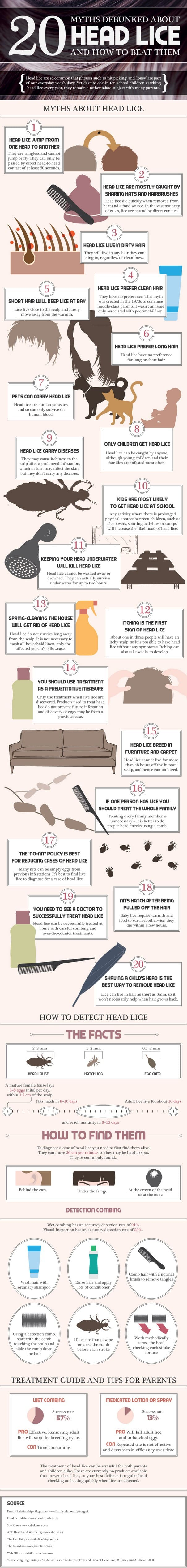 20 Facts About Headlice Infographic