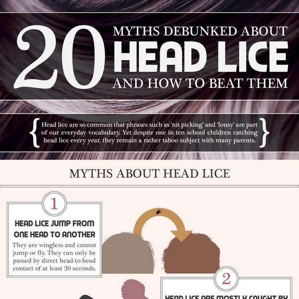20 Facts About Headlice - Infographic1