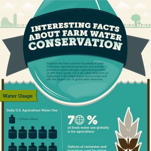 Interesting Facts About Farm Water Conservation Infographic1