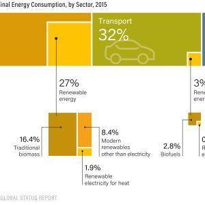 Renewable Energy in Total Final Energy Consumption by Sector 2015 300x300 1 300x300