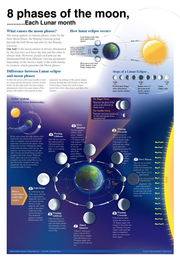 8 Phases Of The Moon Infographic